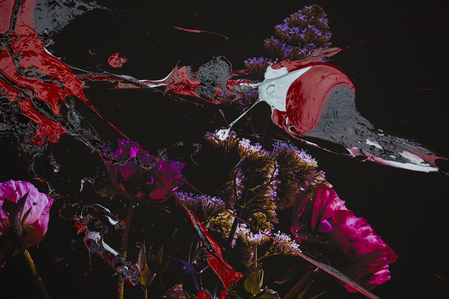 #painting - #photography - #fineart - #popart - #peterwesth - Peter Westh - @peterwesth - Flower Detail