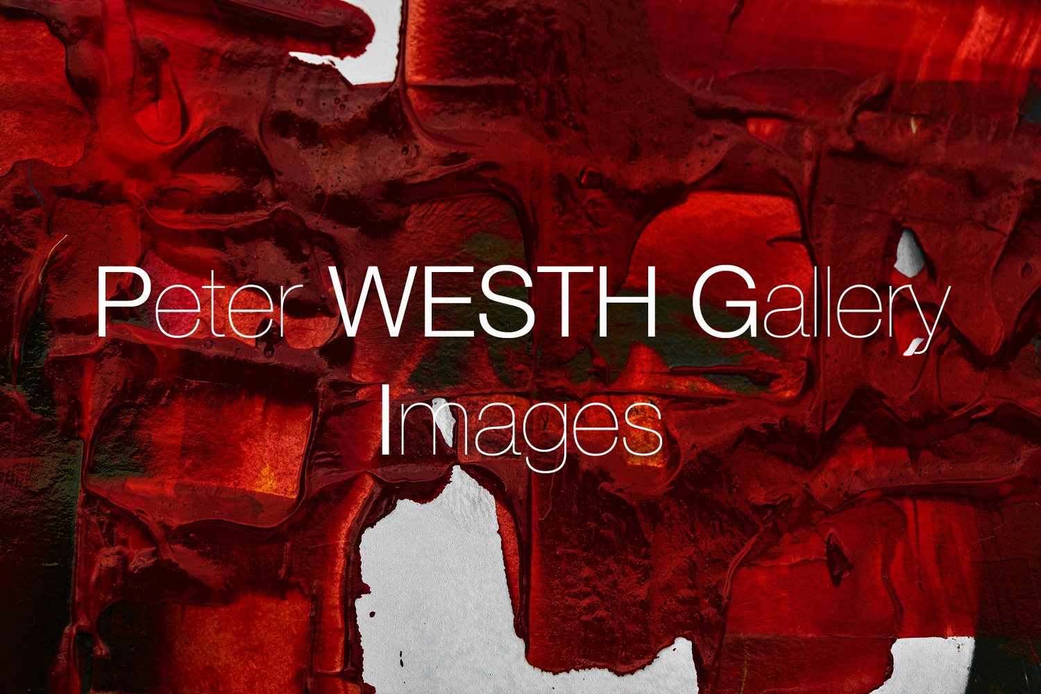 #painting-#photography#fineart#popart-#peterwesth-Peter Westh-@peterwesth-Alexander-McQueen-detail-beauty-red