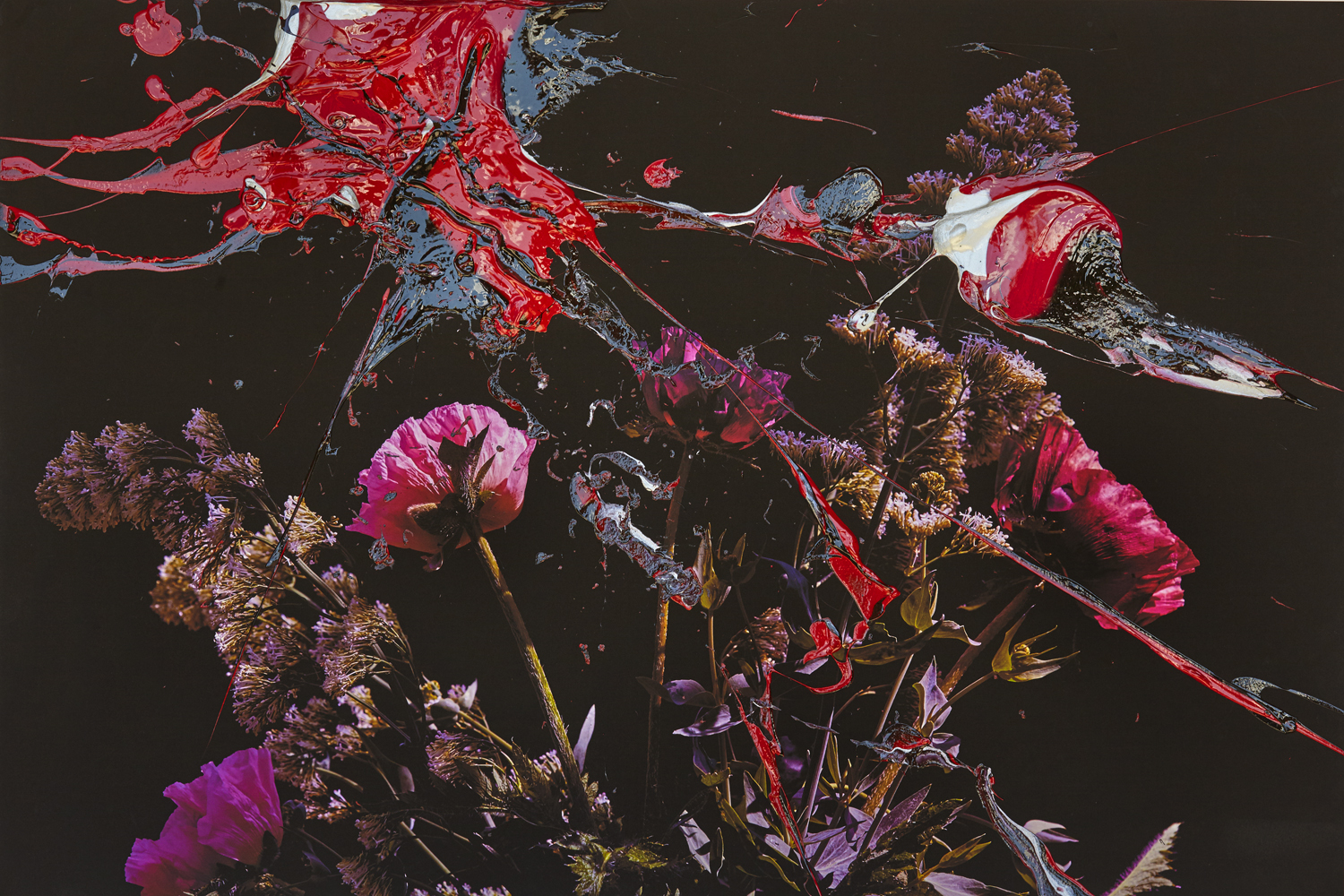 #peterwesth-Peter Westh-@peterwesth-flowers-fineart-poppy-abstract-painting-photography-popart